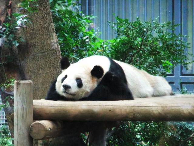 某動植物園
